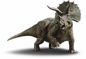 5 Ft 2 Weight Chart Triceratops Jurassic World