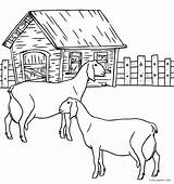 Coloring Pages Animal Farm Cool2bkids Printable Goats sketch template