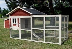 Plan Poulailler 5 Poules : construire poulailler pour 4 poules poulailler ~ Premium-room.com Idées de Décoration