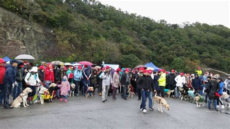 the event aimed to raise fund for the services of hong