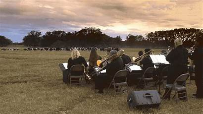 Farmer Cows Trombone Plays Gather Song Every