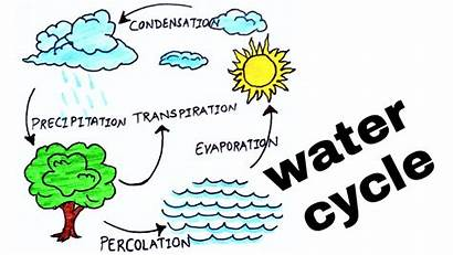 Cycle Diagram Water Clipart Simple Easy Draw