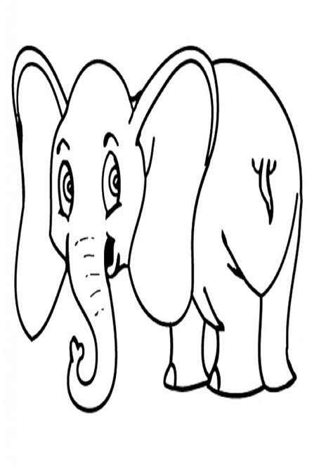 animales salvajes dibujos  colorear