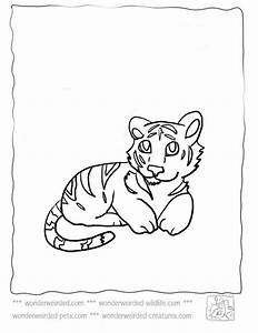 Baby Tiger Coloring Pagesechou002639s Cute Tiger Coloring Pages