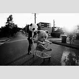 Hipster Animal Masks | 500 x 333 jpeg 48kB