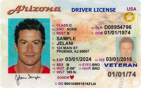 renew  arizona drivers license