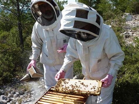 miel de sumac des calanques