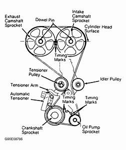 1995 Hyundai Elantra Serpentine Belt Routing And Timing