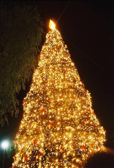 christmas  christmas  cyprus
