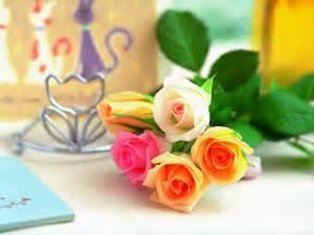 roses bouquet 玫瑰花可以如何食用 玫瑰花百科