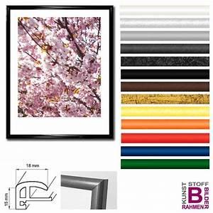 Din A2 Bilderrahmen : bilderrahmen din a2 42x60 cm elegance kunststoffrahmen ~ Buech-reservation.com Haus und Dekorationen
