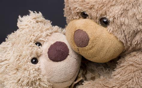teddy bears hd wallpaper background image