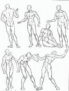 Simple Anatomy Drawing At Getdrawings