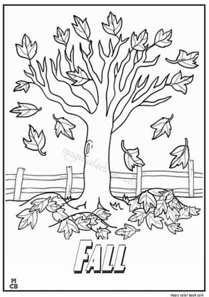 Fall Coloring Autumn Sheets Drawing Getdrawings Tree