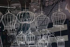 Classic Decorative Bird Cage Royalty Free Stock Images