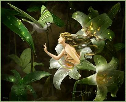 Mythology Fairy Fantasy Animation Giphy Flower картинки