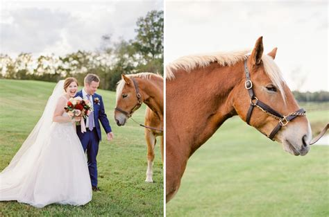 Romantic Fall Wedding At The Middleburg Barn At Foxchase