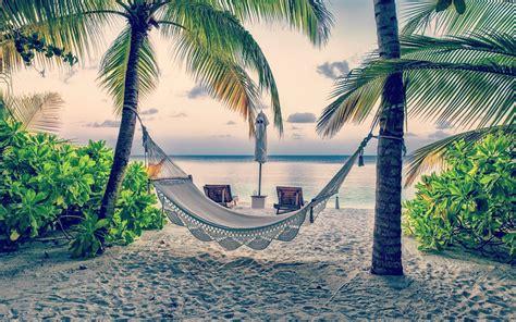 vacation beach palms rope hammock widescreen wallpaper