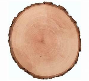 Holzscheibe 40 Cm : holzscheiben rund 12 15 cm rindenscheibe baumscheiben ~ Lateststills.com Haus und Dekorationen