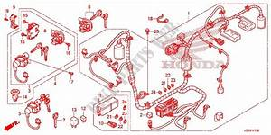 Wire Harness  Battery For Honda Sh 125 Abs Special 2e 2014