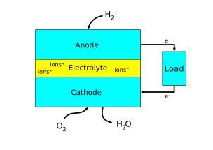electrode energy education
