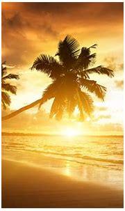 Beach Wallpapers sunshine - HD Desktop Wallpapers | 4k HD