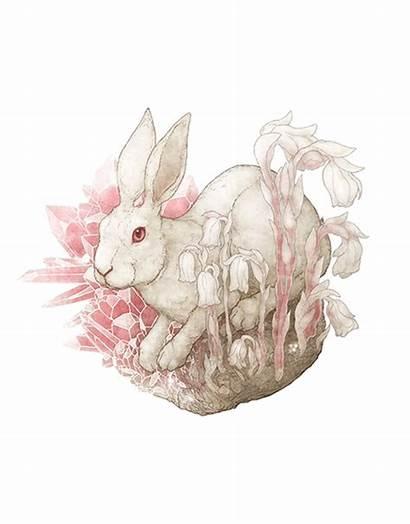 Hare Nature Nursery Rose Watercolor Kyanite Flower