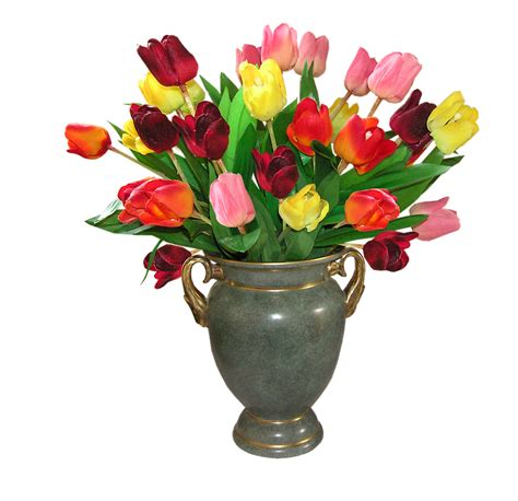 flower vase png tulips flowers 183 free photo on pixabay