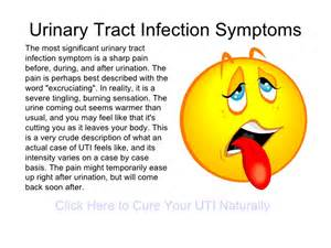 signs of urinary tract infection in cats urinary tract infection uti is an infection anywhere in