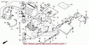 honda accord body parts diagrams honda free engine image With honda cbr 1000 hurricane wiring together with cbr 1000 vacuum diagram