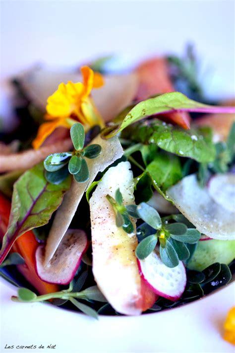 cuisiner le fenouille jardinage et plantes diverses page 2