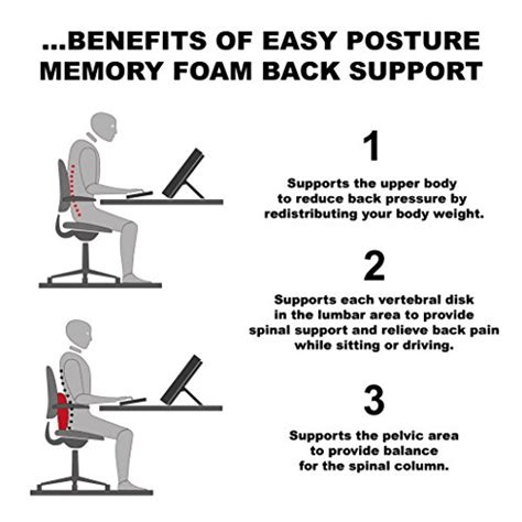 easy postur lumbar support cushion for your back