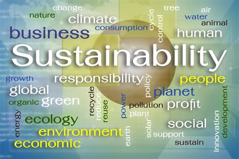 sustainable development goals  meet global development
