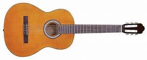 Guitar Accessories Guides Guitar Strings
