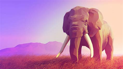 polygon elephant wallpapers images  pictures backgrounds
