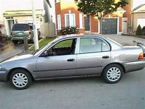 1995 Toyota Corolla Dx Startup Exhaust  U0026 In Depth Tour