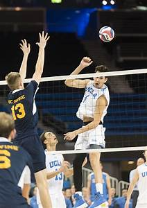 UCLA men's volleyball prepares to face Princeton, UC ...