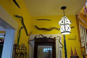 Home Decor Trend Report: Snakes Slither Hither HuffPost