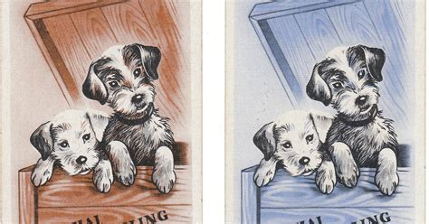 View From The Birdhouse More Pairs Of Vintage Dog Playing