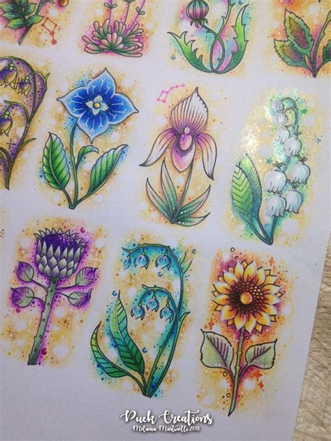 days  flowers  world  flowers coloring book
