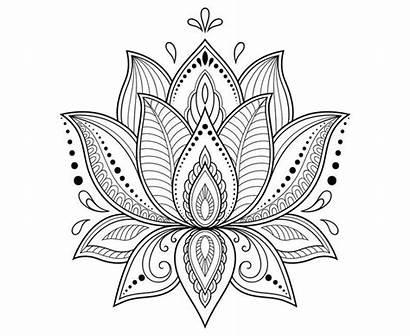 Lotus Mandala Flower Drawing Zentangle Tattoo Henna