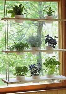 Hängende Pflanzen Für Draußen : h ngende zimmerpflanzen k nnen die beste h nge ~ Sanjose-hotels-ca.com Haus und Dekorationen