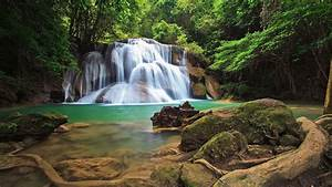 Forest Waterfall Wallpapers