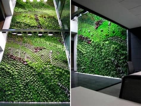 To Do A Vertical Garden by Spain S Largest Vertical Garden Cleans Indoor Office Air