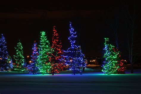 best christmas light displays holiday lights at spruce meadows kids in cowtown