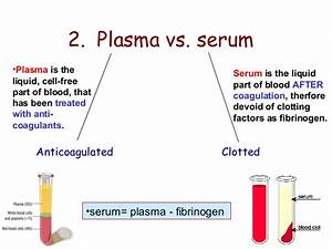 Blood, minus all the cells and fibrin is called what ...