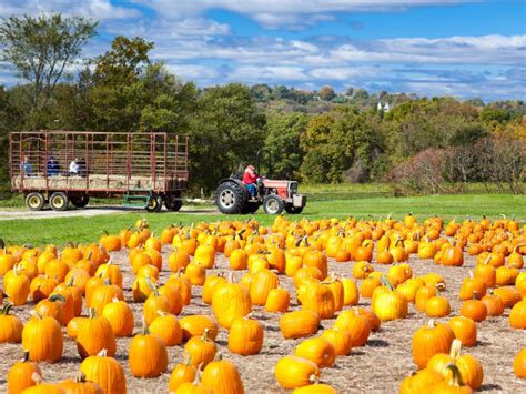 Colorado Pumpkin Patches 2017 by 7 Best Things To Do In North Carolina This Fall