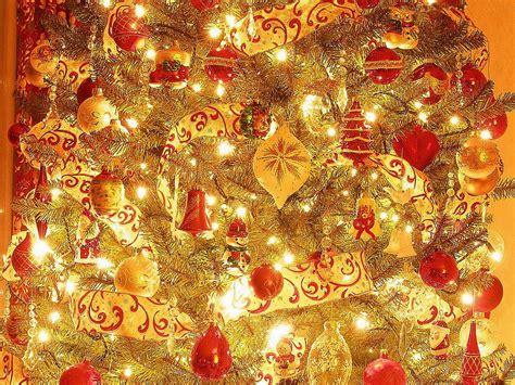 magical christmas berni yorkshirerose