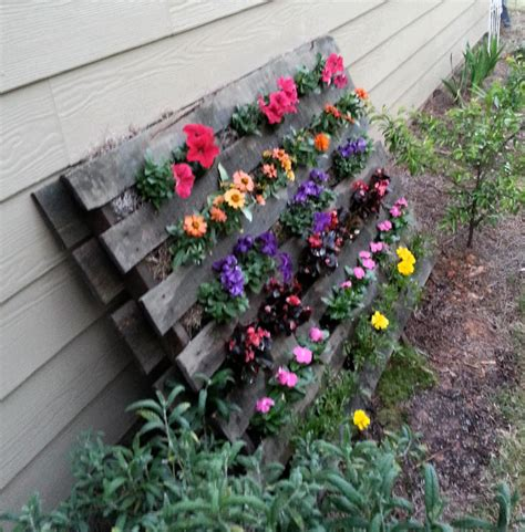 jardinage de fleur sur soin d orchid 233 es jardinage en pots et petit am 233 nagement de
