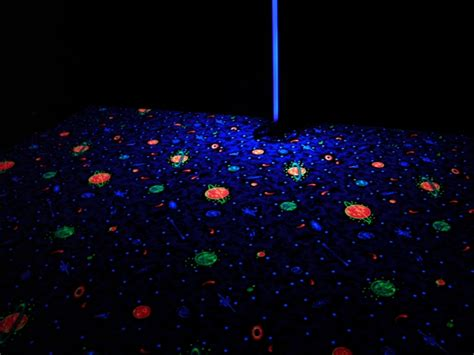 black light carpet sns carpet vidalondon